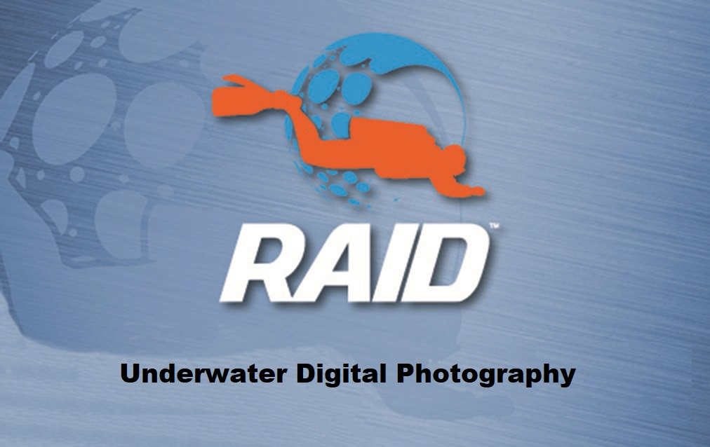 Dive RAID Underwater Digital Photography Specialty